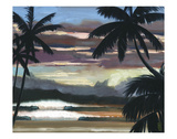 Niwiliwili Sunset Prints by Wade Koniakowsky