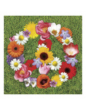 Peace Wreath Posters by Jenny Kraft