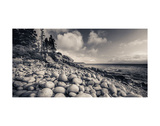 Otter Cliff Coastline Prints by Michael Hudson