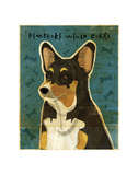 Pembroke Welsh Corgi (Tri-Color) Prints by John W. Golden