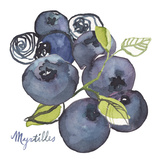 Myrtilles Giclee Print by Sandra Jacobs