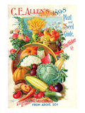 Allen's Seed Guide Brattleboro Posters