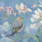 Birds in Magnolia - Detail I Giclee Print by Sarah Simpson