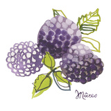Mures Giclee Print by Sandra Jacobs