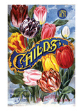 Childs Tulips Laruel Park NY Art
