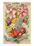 Conard & Jones Floral Guide Posters