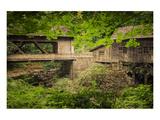 Don Schwartz - Cedar Mill and Covered Bridge Speciální digitálně vytištěná reprodukce