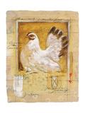 Chicken Prints by  Joadoor