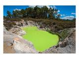 Devil's Bath Crater Wai-O-Tapu Art