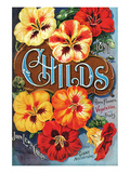 Childs Nasturtium Floral Park Posters