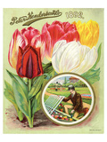 Henderson 1892 Tulips Posters