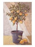 Lemontree Plakat af Karsten Kirchner