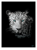 Leopard Photograph 2 Giclee Print by Armand Brito