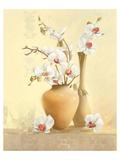 Les Vases D'Orchidées Posters par Gerard Beauvoir