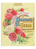 Rawson Seed 1893 Boston MA Print