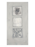 Roses Melange Prints by Anna Flores