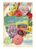 Salzer Seed Company Lacrosse Prints