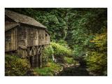 Don Schwartz - Schwartz - Cedar Creek Grist Mill Speciální digitálně vytištěná reprodukce