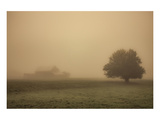 Schwartz - Foggy Barn Prints by Don Schwartz