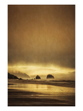 Schwartz - Sea Stacks at Sunset Poster by Don Schwartz