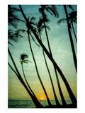 Schwartz - Tilting Palms Art par Don Schwartz