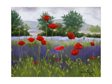 Poppies and Lavender Premium Giclee Print by Julie Peterson