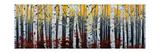 Birkenwald Kunstdrucke von Julie Peterson