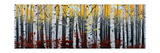 Birch Forest Prints by Julie Peterson