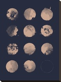 12 Moons Stretched Canvas Print by Florent Bodart
