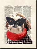 Shihtzu Stretched Canvas Print by Matt Dinniman
