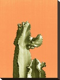 Cactus On Orange Stretched Canvas Print by  LILA X LOLA