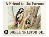 Shell Tractor Oil - Farmer Prints