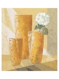 Single White Chysanthemum Prints by Karsten Kirchner