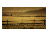 Schwartz - Yampa Valley Morning Posters by Don Schwartz