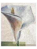 Standing White Prints by Karsten Kirchner