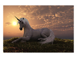 Unicorn on Hilly Sunset Knoll Prints