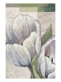 White Embrace Giclee-tryk i høj kvalitet af Karsten Kirchner