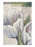 White Embrace Posters by Karsten Kirchner