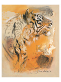 Wildlife Tiger Prints by  Joadoor