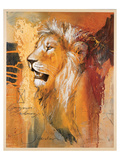 Wildlife Lion Prints by  Joadoor