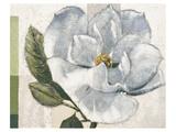 Warm Hearted Giclee-tryk i høj kvalitet af Karsten Kirchner
