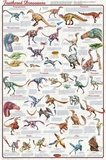 Laminated Feathered Dinosaurs Science Poster Photo