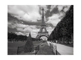 Eiffel Tower Topiary - Paris, France Photographic Print by Henri Silberman