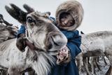 Nenet Herdsman With Reindeer Reproduction photographique par Arne Hodalic