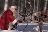 Santa Claus (Father Christmas) Feeding Reindeer Photographic Print by Bryan and Cherry Alexander