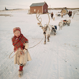 Young Sami Girl Leading Reindeer Photographic Print by Bryan and Cherry Alexander