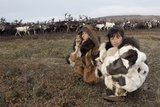 Chukchi 'Festival Of The Young Reindeer Photographic Print by Bryan and Cherry Alexander