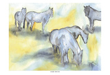 Field of Horses Poster by Beverly Dyer