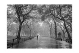 Henri Silberman - Central Park Poet's Walk - New York City Landmarks Fotografická reprodukce