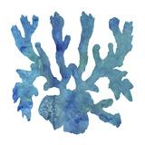 Aqua Watercolor Prints by Sheldon Lewis